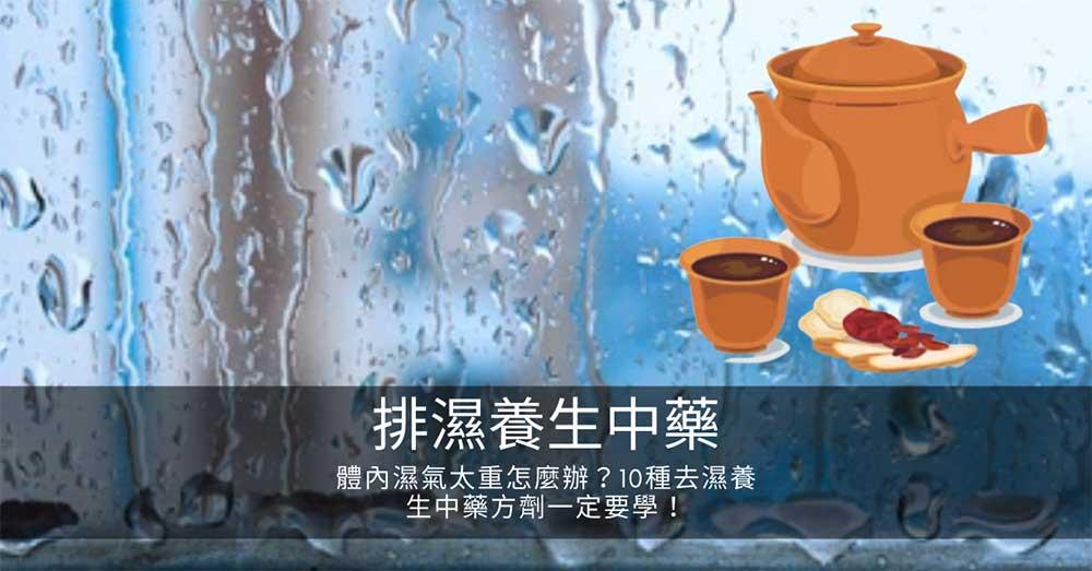 體內濕氣太重怎麼辦?10種去濕養生中藥方劑一定要學!