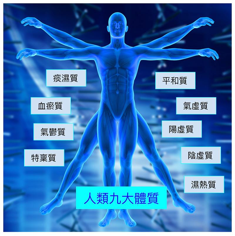 現代中醫將人類分為九大體質